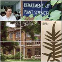 Plant Sciences Research Seminars logo